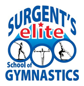 Freestyle Gymnastics Classes
